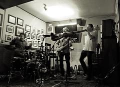 Greenheart (nigelparrington) Tags: music musicians live band lancaster didgeridoo greenheart