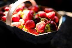 Merry Berry Bokeh (DHaug) Tags: morning red fruit dof basket sweet bokeh ottawa strawberries fujifilm locallygrown xpro2 xf16mmf14rwr