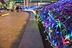 * (E_O_S) Tags: china street city travel urban color asia shanghai bokeh finepix fujifilm pudong orbs x10 lujiazui