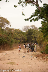Birdwatchers and guides, Brufut Woods, The Gambia (www.kevinoakhill.com) Tags: bird canon woods kevin oakhill 7d gambia watchers thegambia birdwatchers birdguide brufut brufutwoods canoneos7d canon7d kevinoakhill