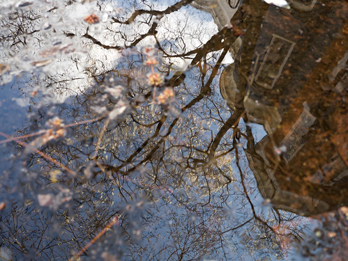 Reflecting Two, by Reed A. George