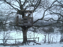 my treehouse in the snow (richardcoackley) Tags: wood house snow tree green fort handmade getaway secret lookout treehouse nails shanty hideout safehouse richardcoackley