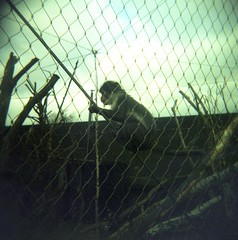 Zoo007 (Old Man Wesley) Tags: london zoo monkey holga lomo xprocess