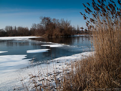 Hiver... (Daniel Jost Photography) Tags: hiver 2012 lacachard illkirchgraffenstaden canonpowershotg10