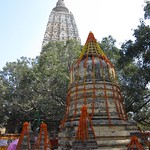 "Mahabodhi Temple <a style=""margin-left:10px; font-size:0.8em;"" href=""http://www.flickr.com/photos/14315427@N00/6875022537/"" target=""_blank"">@flickr</a>"