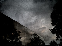 Are buildings growing in the Dark Forest? (joansorolla (more off than on)) Tags: trees apple architecture buildings edificios rboles explore arbres catalunya iphone terrassa curtainwall edificis p7000 murocortina murcortina