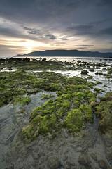 Mosses (Randi Ang) Tags: sunset seascape beach canon indonesia landscape eos filter 5d ang lombok hitech kuta randi seger ntb