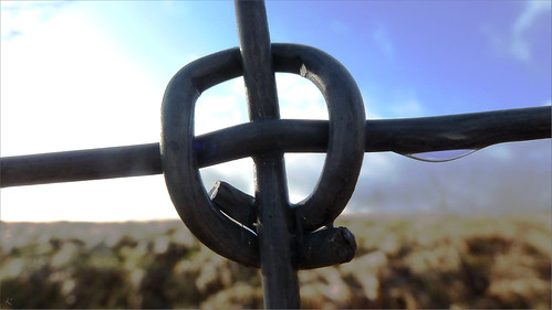 Close-up of a fence