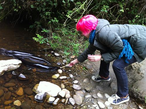 Erin feeding the eels