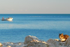 093 Sciacca (Ag) - Sicily (tango-) Tags: from italy italia view you photos or sicily everyone italie sicilia sicile sciacca sziclia      sicilya   tiberiofrascari     x xitaliexxxsicilyaxsicilexxszicliaxxx