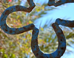 Blue horseshoe1 (B1GBAD) Tags: travel blue sea sky urban detail green art beach beauty fauna coast interesting spain flora nikon rust scenery pattern desert natural object wildlife creative sanjose explore almeria lanscape cabodegata focal horsehoe parquenatural hmsspaincom