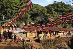 Pilgrim's path to Adam's Peak - Sri Lanka (Sekitar) Tags: mountain landscape adams path buddhist flag peak sri lanka sacred srilanka gunung malai pilgrim pemandangan adamspeak sripada maskeliya samanalakanda butterflymountain  sivanolipatha