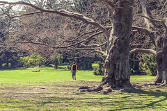 109 / 365 - parklife @ Trkenschanzpark (Matthias Obergruber Photography) Tags: vienna park trees people sun tree grass sunshine austria spring couple meadow romance romantic parklife gersthof 1180 trkenschanzpark at