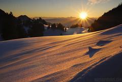 Warm Light on cold Snow  -  expl..19 (alpenbild.de) Tags: schnee winter light sunset sun mountain snow mountains alps nature berg landscape bayern bavaria licht warm sonnenuntergang natur berge alpen landschaft sonne 巴伐利亚 wärme sachrang 50fav aschau chiemgaueralpen 100fav 阳 alpenbildde