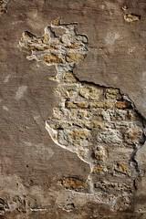 Canard en Faïence (thomas@photo) Tags: france faience canon de eos ile maritime brique mur canard ré charente atlantique océan 550d