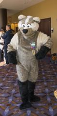 _DSC0663 (Acrufox) Tags: midwest furfest 2015 furry convention december hyatt regency ohare rosemont chicago illinois acrufox fursuit fursuiting mff2015