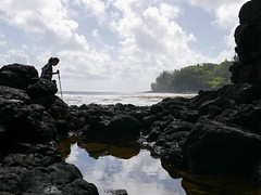 exploring the tide pools (maveric2003) Tags: kauai princeville queensbath
