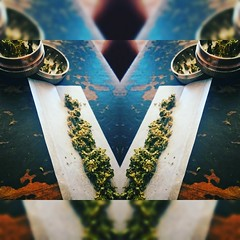 Smoke the weed  (Prisma Ocular) Tags: weed natural smoke yerba marihuana mariajuana