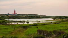 kaap_noord (Joerg Esper) Tags: lighthouse holland nature netherlands landscape natur olympus nl landschaft nordsee vuurtoren texel leuchtturm noordholland niederlande decocksdorp nordholland kaapnoord olympusomdem1 olympus124028 olympusmzuikodigitaled1240mm128pro