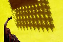 Le sbarre non servono (meghimeg) Tags: muro window yellow wall photo friend foto finestra gelb giallo amica fotografa 2016 grata inferriata savona photografer noracaracci