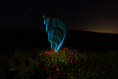 Poppy lights (Victor Francs) Tags: lightpainting night canon tokina poppy nocturna nit amapolas nightfoto 60d banyeresdemariola 1116mm