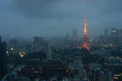 (millefeuillekun) Tags: nikon tokyotower d3200