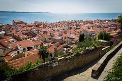 Vakantie Kroati & Sloveni 2015 (redijkstra) Tags: vakantie zee piran uitzicht daken sloveni