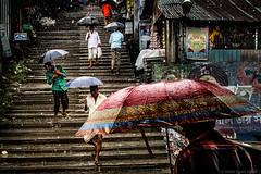 Borsha (Nafiul Hasan Nasim) Tags: life light portrait people nature rain landscape n lifestyle bangladesh nasim nafiulhasannasim