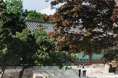 # (David C W Wang) Tags: people plant tree seoul      historicalsites