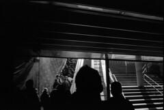 Into the crowd (sinetsin) Tags: barcelona leica voigtlander streetphotography 11 d76 400 neopan pushed 800 m2 rf colorskopar rangefinders 28f35 sinetsin