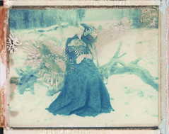Black Fairy (emilie79*) Tags: snow robert branches blackdress polaroid180 iduvfilm