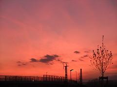 Abenddämmerung bei Ingelheim (rainbowcave) Tags: sunset fuji sonnenuntergang finepix fujifilm dämmerung abenddämmerung ingelheim finepixf200exr f200exr rainbowcave