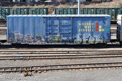 (Laser Burners) Tags: nyc newyorkcity graffiti bronx suicide tracks trains rails boxcar freight cvk citynoise goldenwestservice bfor