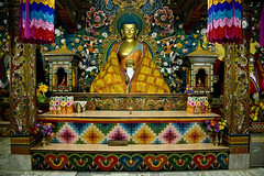 Inside the Monastry (aleemsm) Tags: golden colorful bhutan buddha young monk east monastery strict managed