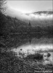 Loch Achray, Trossachs, Scotland (futureal33) Tags: autumn winter blackandwhite bw white lake black mountains reflection water monochrome season mono scotland highlands ben lakes scottish loch trossachs lochs futureal33