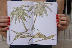 (L a u r a K l a t t) Tags: palmeras desierto lpiz acuarelas lauraklatt