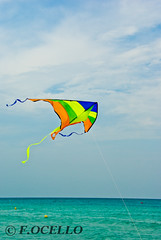 Summer kite (F.Ocello) Tags: travel family blue gay red summer vacation sky people cloud sun holiday kite color classic beach beautiful sunshine childhood sport relax fun toy outside outdoors happy freedom fly flying high rainbow colorful play symbol wind outdoor space aviation air flight happiness sunny hobby line string leisure ribbon summertime recreation