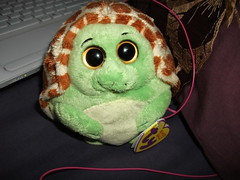 Turtle inna ball!!!! (silentlybroken) Tags: turtle turtleball turtlecoven
