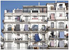 _MG_1969 (Clement Guillaume) Tags: city building arquitetura architecture town al arquitectura haussmann maghreb algerie  ville algrie architectuur immeuble algiers aljazair dz alger radp  dzayer djezair dzair djazar  archiref aljazir maghreb djazir