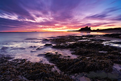 Dawn At Bamburgh Castle (mark_mullen) Tags: uk longexposure sea orange seascape seaweed color colour reflection beach sunrise landscape countryside sand scenery purple vivid alnwick northumberland northsea coastline berwickontweed farneislands eastcoast canon1740f4 bamburghcastle northofengland canon1dsmkii markmullenphotography