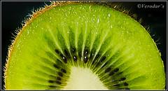 Kiwi Close up ( 2 of 4 ) - Explore (VERODAR) Tags: kiwi