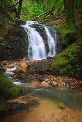 Upper Falls (tompost) Tags: green nature spring lush santaclaracounty countypark watefalls uvascreek