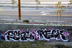 THE ESTABLISHMENT AND THE WRECKAGE (sweet16nine) Tags: ska otr bla nct gsf lod