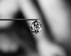 Trapped Souls (DMCleveland) Tags: macro reflection water waterdrop body needle figure refraction bodies waterdropmacro roccotaco sonynex7