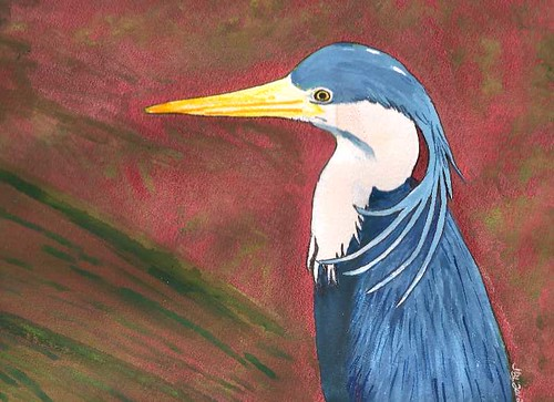 Pied Heron - Original Watercolor