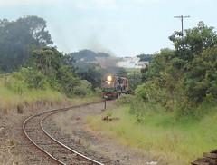 17075a Zoom nas DDM45 #834 + 863 + BB36-7 #711 com trem M780 chegando no Km645 em Uberlndia MG (Johannes J. Smit) Tags: brasil vale trens fca efvm