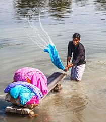 Dhobi Wallah - Lucknow (Rachel Dunsdon) Tags: india water river washing lucknow dhobi dhobiwallah inindia2014