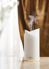 Aroma Diffuser ~ U.S. (Young Living Essential Oils) Tags: beauty us bamboo spanish essential oil oils diffuser speaking stylize diffusers 4592 ussp aromadiffuser ultrasonicdiffuser photodp uslabel younglivingessentialoilsllc