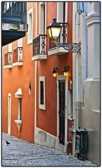 Callejn De La Capilla (SamyColor) Tags: street color lamp colors calle oldsanjuan puertorico streetlamp colores cobblestones sanjuan balconies lampara colori viejosanjuan adoquines balcones colorido callejondelacapilla canon50d supertakumar55mmf20 lamparacallejera