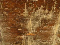 Riverway Park, Boston MA (Boston Runner) Tags: bridge water stain boston stone massachusetts repair underside damage fenway emeraldnecklace 2016 muddyriver fredericklawolmsted riverwaypark